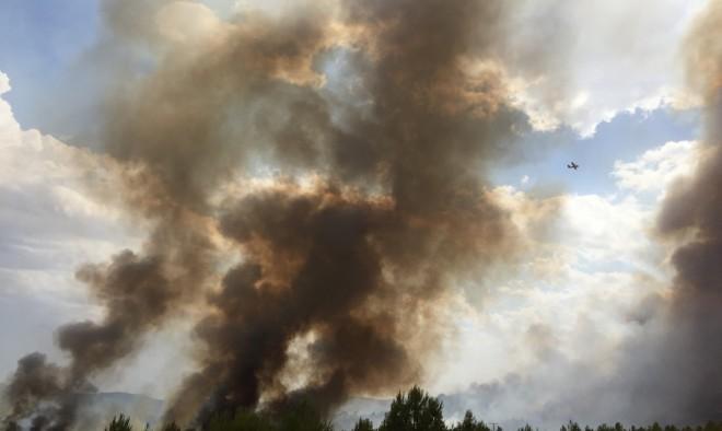 Incendio Forestal / EFDH.
