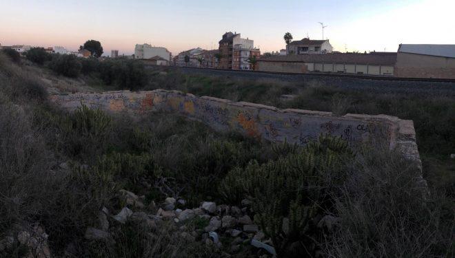 """El Grupo Municipal del  Partido Popular preocupados por la nueva aparición del """"Cactus Arizona"""""""