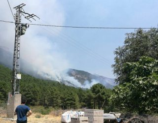 Aparatoso incendio en el Parque Natural del Calar del río Mundo