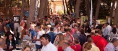 Éxito de participación en la Feria del Vino de D.O. Jumilla