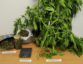 Un detenido por transportar droga en un vehículo