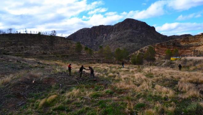 """Se hace realidad el """"Bosque Los Donceles Trail"""" con la plantación de los primeros  árboles"""