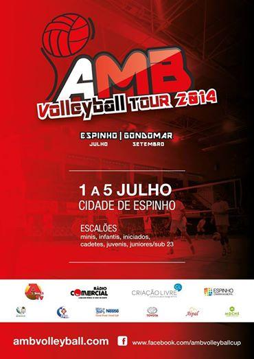 International Volleyball Espinho