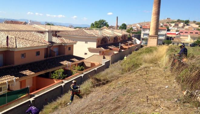 Se inician los trabajos de desbroce del jardín de la Tejera