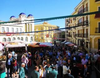 Fiestas de San Rafael