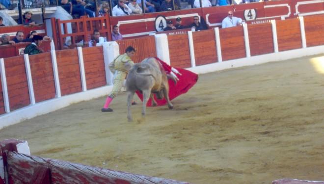 Javier Castaño salió por la puerta grande en el festejo de homenaje al Tambor de Hellín