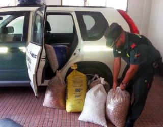 La Guardia Civil en dos actuaciones recupera 600 kilos de almendra sustraída y un tractor con remolque