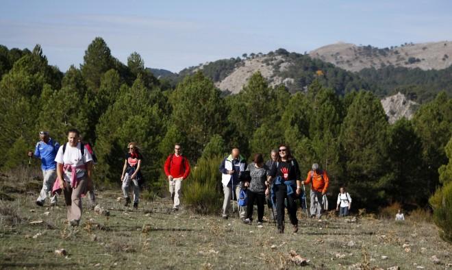 Participantes en la Ruta de Paterna del Madera