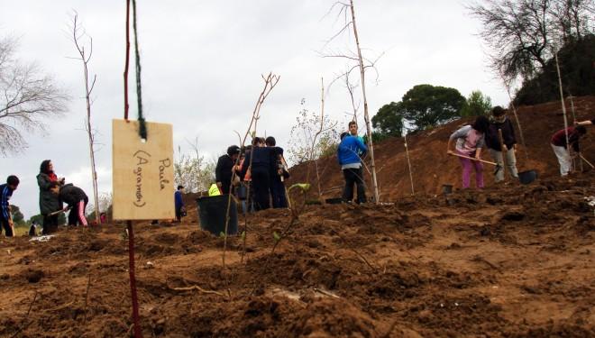 Estudiantes de Hellín apadrinan la plantación de árboles autóctonos en la ribera del río Mundo