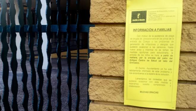 El CP Isabel La Católica obligado a cerrar su acceso principal por la plaga de orugas