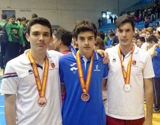 Tres medallas nacionales para el voleibol