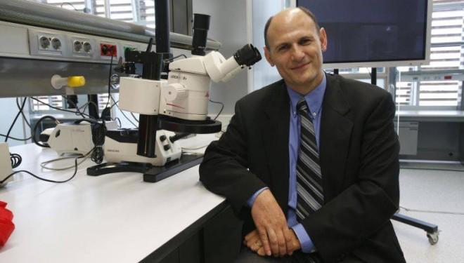 Desarrollan un método para generar las células que 'crean' y reparan órganos