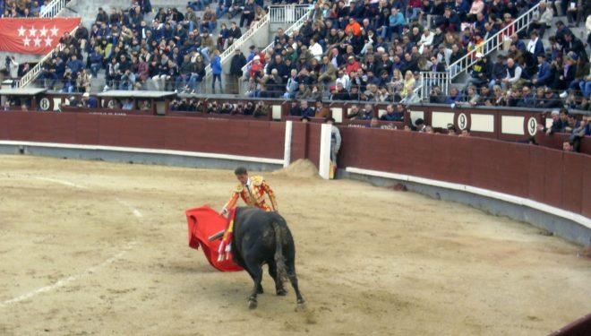 Oreja de Oro para Diego Carretero en Las Ventas de Madrid