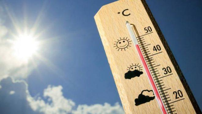 Altas temperaturas en Hellín