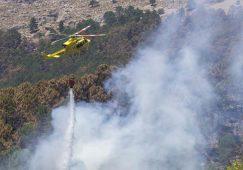 800 hectáreas afectadas por incendios forestales en la pasada campaña