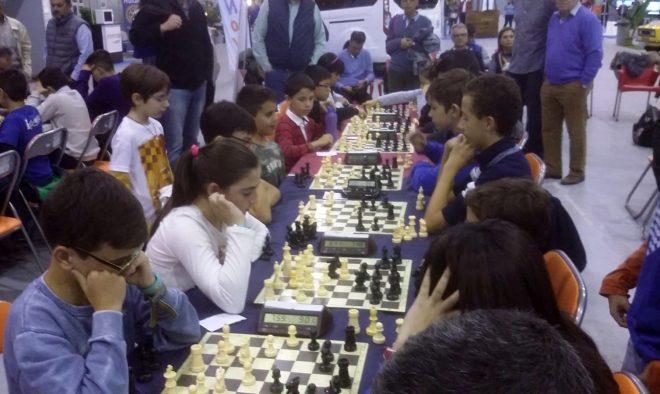 Torneo Optium Sport.