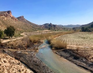 La Guardia Civil investiga a dos personas por un incendio en Moratalla y Hellín con más de 12. 000 metros² afectados