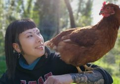 La epopeya del gallo
