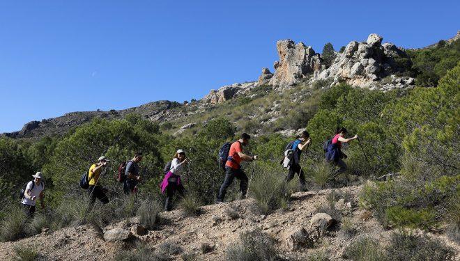 Impresionante día en Ontur con la VI de las rutas de senderismo de la Diputación