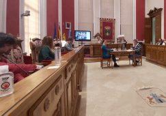 Frases del Pleno