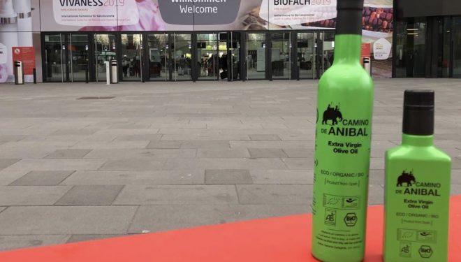 Nuevo premio internacional para los aceites El Camino de Anibal
