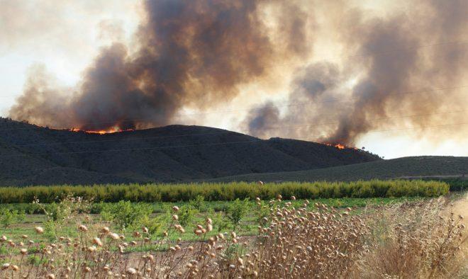 Incendio Agramón - Foto EFE.