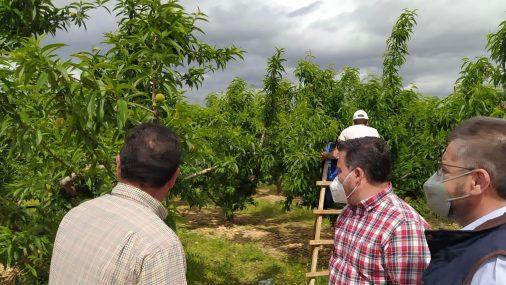 Moreno Moya reclama a Page que deje de estar en otras cosas y se centre en los problemas de los agricultores