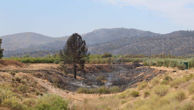 El incendio iniciado en Liétor en su última fase de extinción