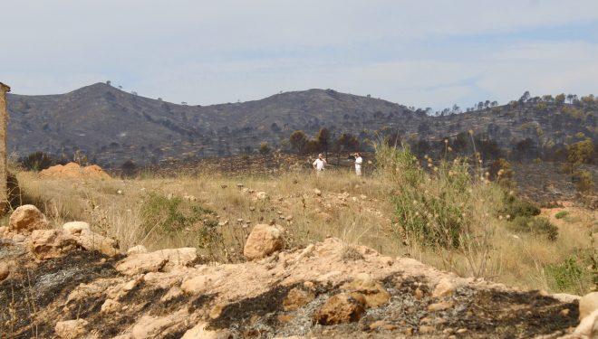 Un nuevo incendio castigó el término municipal de Hellín